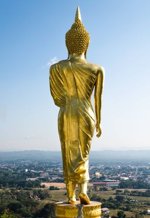 wellfare: Behind the buddha