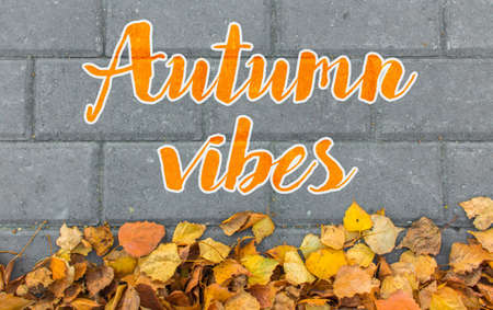 Good vibes autumn concept. Yellow leaves on paving stone