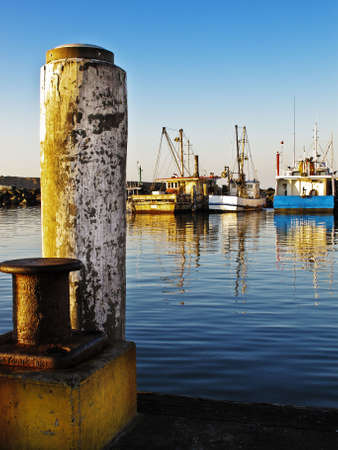 Fishing trawlers moored in the calm waters of a marina.