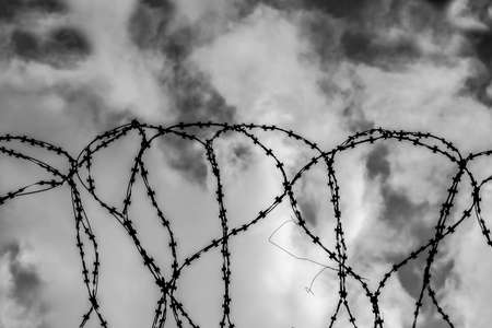 Barbed wire on sky background, black and white  photo