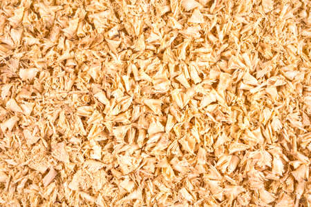Wooden shavings as background or texture