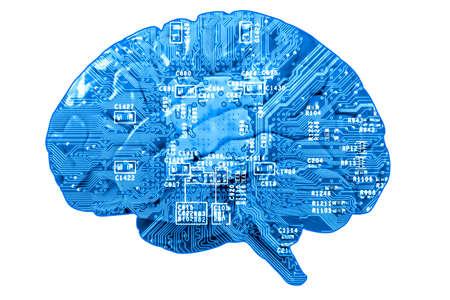 codigo binario: Concepto Informativo: placa de circuito en forma de cerebro humano aislado en blanco Foto de archivo
