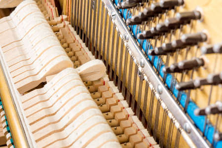damper: Pattern of hammers and strings inside piano, close up. One hummer in action while key is pressed. Stand out from the crowd concept.