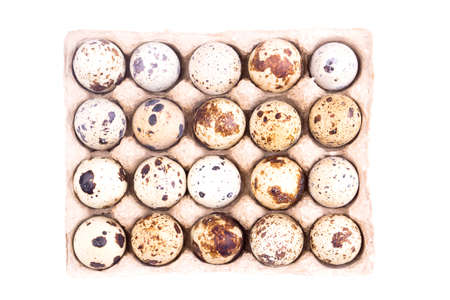 Quail eggs in cardboard tray isolated on white