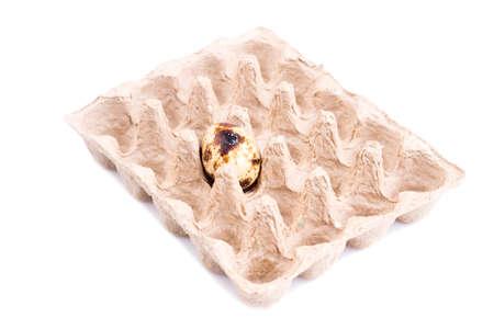 Single quail egg in cardboard tray isolated on white Standard-Bild