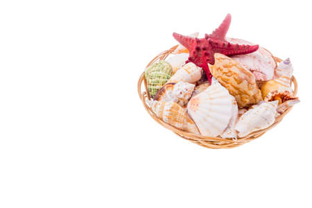 Collection of seashells on wicker plate isolated on white