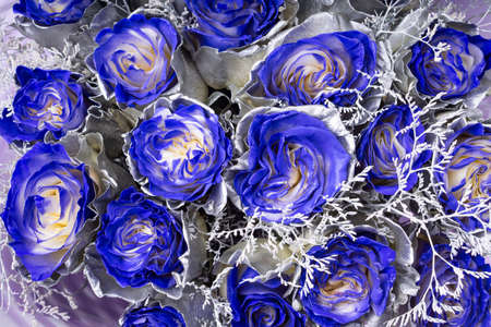 Wallpaper background of blue roses, silver coloring on the petals