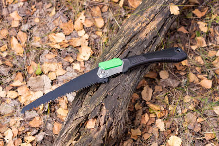 Folding portable handsaw on forest background