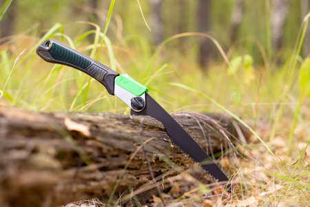 Folding portable handsaw ready for use in forest Zdjęcie Seryjne