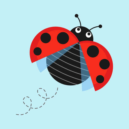 lady in red: Cartoon flying ladybug on a blue background vector illustration. Funny ladybug in flight in a flat style. Isolated Icon jolly bug or insect.