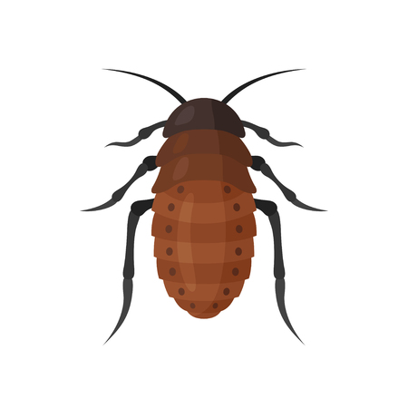 Cockroach vector icon on white background. Illustration of a cartoon big brown cockroach. Insects isolated symbol. Illustration