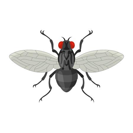 Ilustracja wektorowa mucha domu w stylu cartoon. Ikona insekta czarna komarnica odizolowywająca na białym tle. Irytujące, bzyczące owady, wektor infekcji. Ilustracje wektorowe