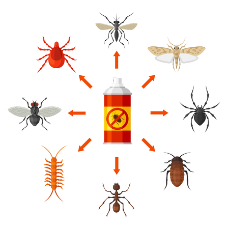 Pest control with insecticide vector illustration. Identification and destruction of cockroaches, termites, mites, fleas, spiders, etc. Pest control service concept. Illustration
