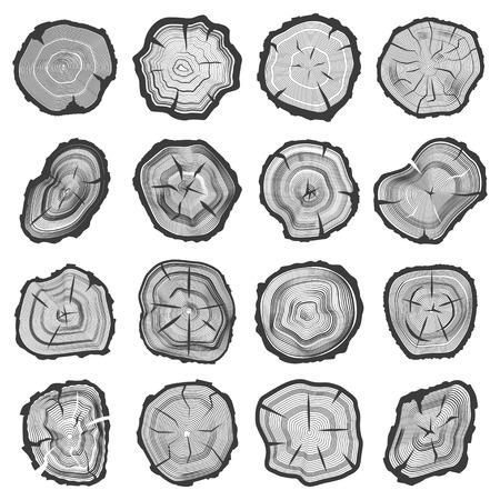 Houten jaarlijkse geplaatste ringen, sawcut de oude lijn van de boomboomstam grafisch met spleten en barsten, aardbeeld. Vector vlakke stijl illustratie geïsoleerd op een witte achtergrond Stock Illustratie
