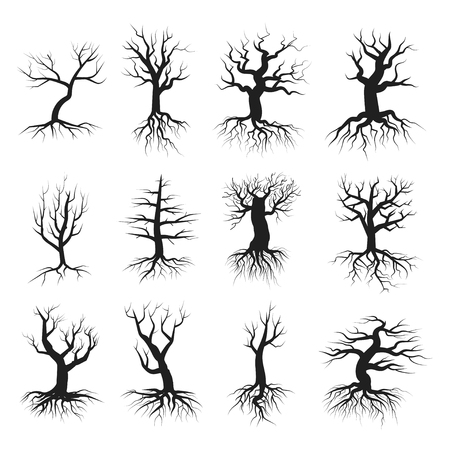 balck: Dead tree set. Balck silhouette, large dry branches and roots, old forest, spooky wild wood. Vector flat style illustration isolated on white background Illustration