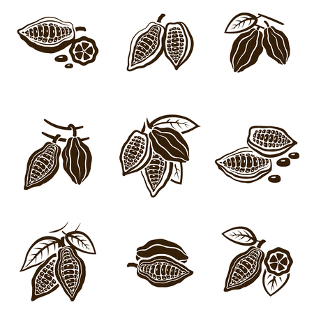 Cocoa Beans set. Pod with leaves on a tree, organic raw product to make natural chocolate. Vector flat style illustration isolated on white background