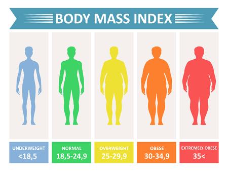 질량 단체 색인. 키와 체중을 기준으로 체지방의 등급 차트를 킬로그램 단위로 표시합니다. 흰색 배경에 고립 된 벡터 플랫 스타일 만화 일러스트 레이션