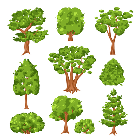 Set di alberi e cespugli verdi. Piante sempreverdi per la decorazione di parl e città. Illustrazione del fumetto di stile piano vettoriale isolato su sfondo bianco