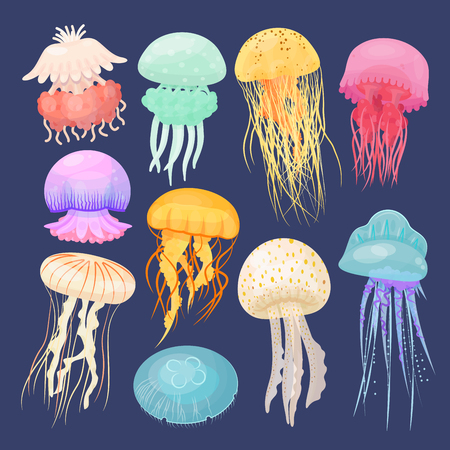 Ocean jellyfish bright set on dark blue. Beautiful marine coelenterate with a jelly like bell, transparent and colorful sea life. Vector flat style cartoon illustration isolated on blue background Illustration
