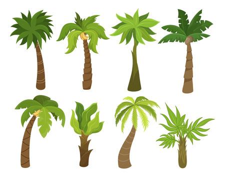Tropical palm trees set, beach and nature concept Иллюстрация