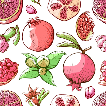 Pomegranate seamless pattern, fruit and nature ornament. Garden decoration textile. Vector illustration on white background Фото со стока - 124207304