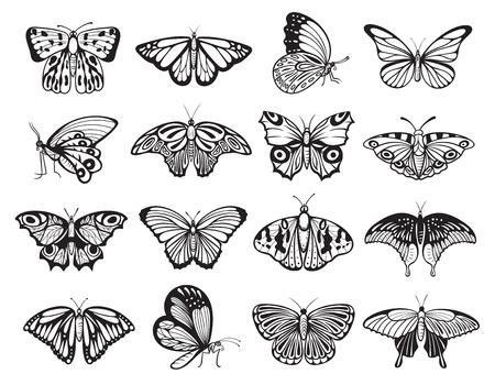 Insieme della siluetta della farfalla, ornamento della fauna selvatica della decorazione della natura. Insetto che si nutre di nettare con due paia di grandi ali. Illustrazione di arte di linea vettoriale