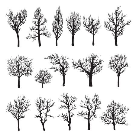 Bomen zonder bladeren zwart grafisch silhouet icoon