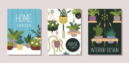 Houseplants shop flat banner vector templates set. Home garden, house interior design store advertising poster layout. Natural flowers sale business. Decorative plants illustration with typography