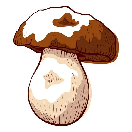 Porcini edible fresh mushroom icon, healthy ingredient