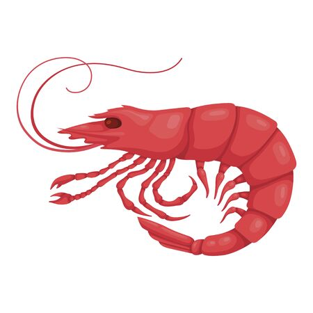 Shrimp pink icon, boiled healthy seafood ingredient