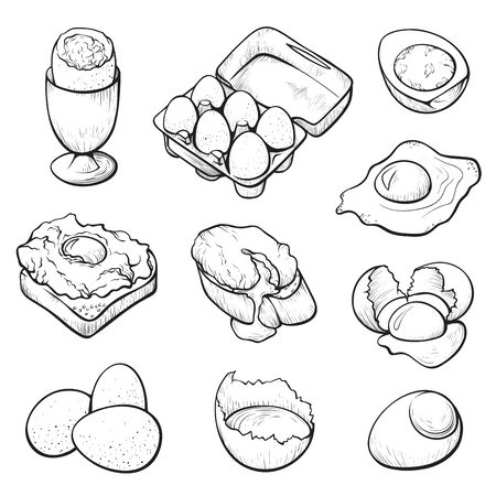 Raw and cooked eggs hand drawn vector illustration set