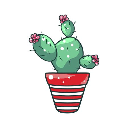 Green home cactus in a pot, natural houseplant. Green house decoration. Vector flat style cartoon illustration isolated on white background Ilustração
