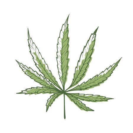 Hemp leaf icon, green organic cannabis plant