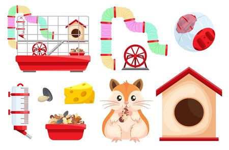 Hamster habitat and accessories. Rodent cage two level with tube, tunnel, exercise wheel. Vector Illustration
