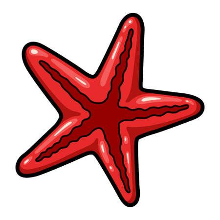 Starfish, marine echinoderm, red star-shaped water creature
