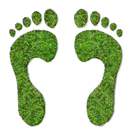 relating: Grass footprints, relating to the environment. View close up for high detail.