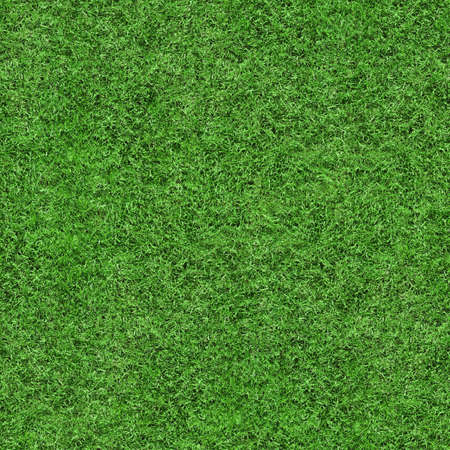 Green grass texture seamless background, perfect for nature, environment, sport and more...