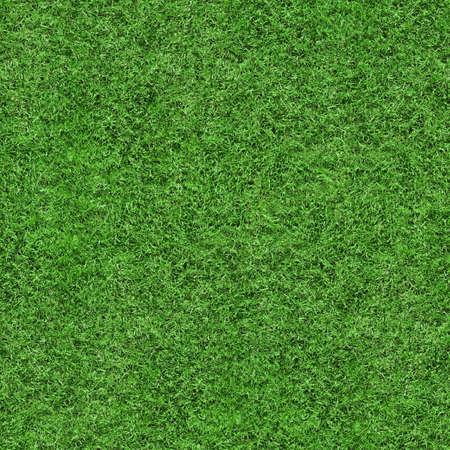 Groen gras textuur naadloze achtergrond, perfect voor natuur, milieu, sport en nog veel meer ...