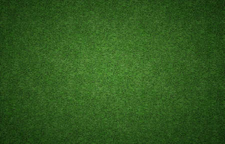 Green grass background texture with grunge lighting and lots of copy space. Perfect for sport designs Imagens - 38570053