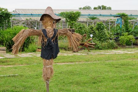 A Lone Scarecrow In The Field Stock Photo