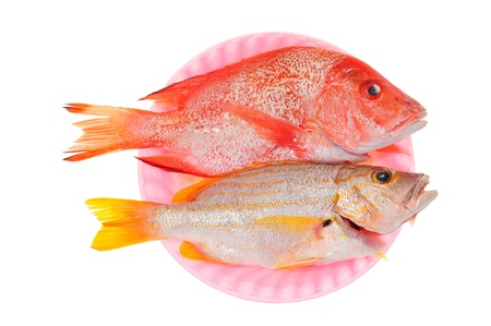 Two Fishes Ready For Cooking photo