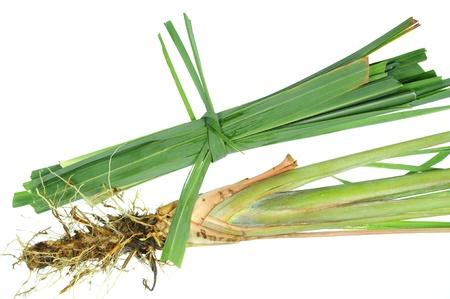 Lemon Grass Isolated On White Background Stock Photo