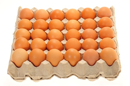un cook: Tray Of Fresh Eggs In A Carton