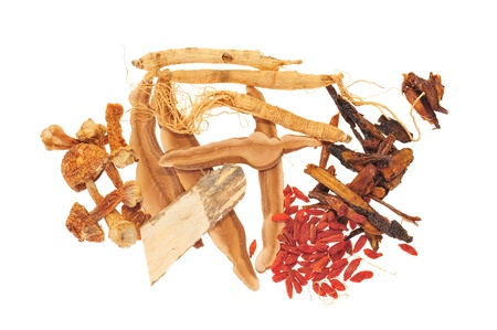 generic medicine: Assortment Of Chinese Herbal Ingredients