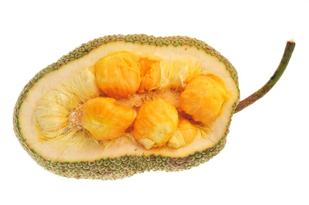 Chempedak,  A Type  OF Tropical Fruit