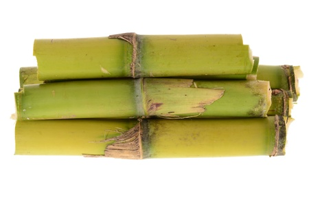 Short Stumps  Of  Sugarcane Archivio Fotografico