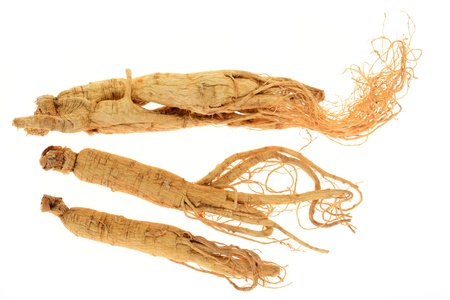 Dried Ginseng Roots photo