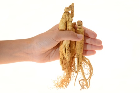 Hand Holding Some Ginseng Roots photo