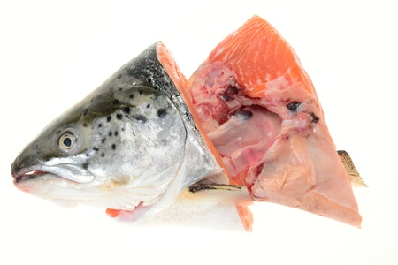Salmon Fish Head Stock Photo