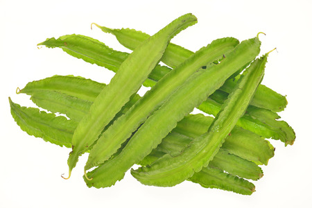 four chambers: Winged Beans, Angled Beans